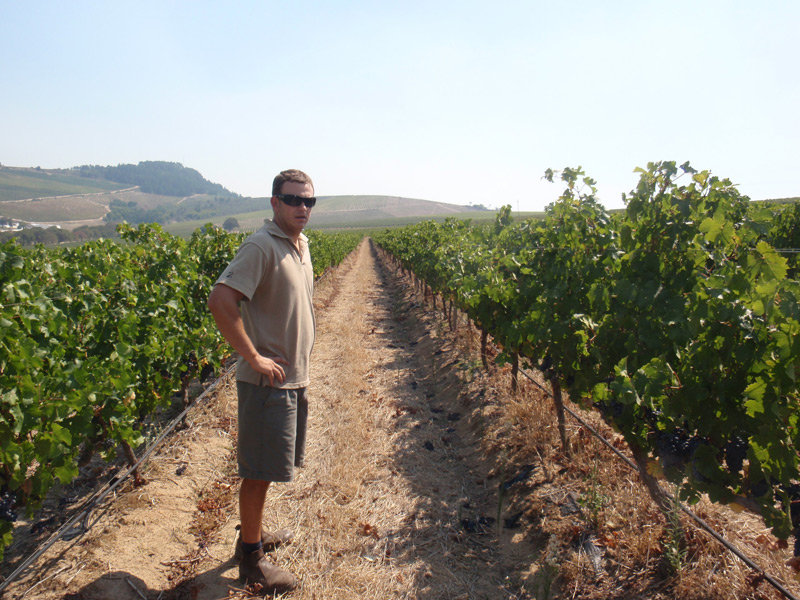 Charles in the vineyard
