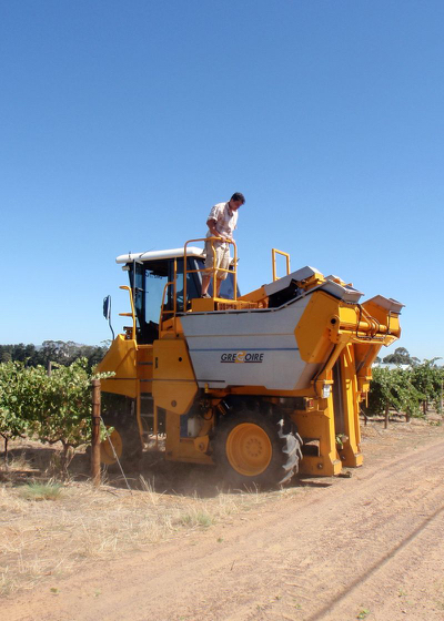 Rolf supervises the harvester
